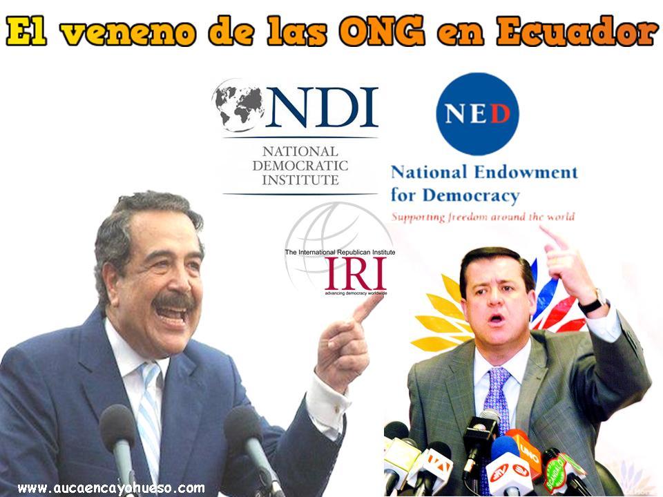 El veneno de las ONG en Ecuador