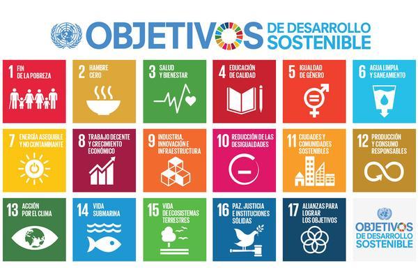 Objetivos Desarrollo del Milenio Post 2015