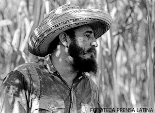 Cuban leader Fidel Castro looks on as he works at a cane plantation in Cuba, April 14, 1966. Prensa Latina Roberto Salas)