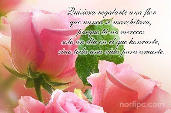 https://aucaencayohueso.files.wordpress.com/2020/03/para-una-mujer-una-flor-nunca-se-marchitara.jpeg